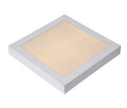 Lucide 28107/30/31 BRICE-LED Ceiling L. Dimmable 30W